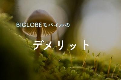 【必見!】BIGLOBEモバイルがオススメできない5つのパターン